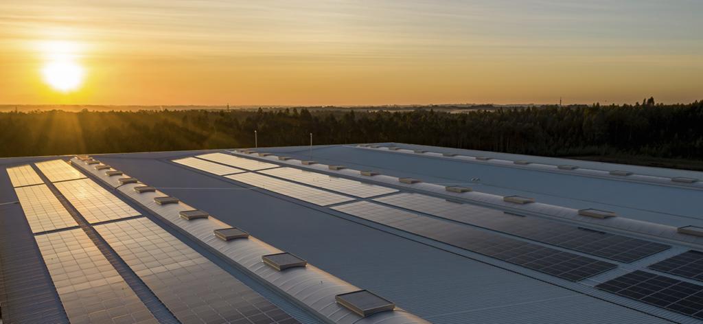 Placas solares - subvenciones a las renovables